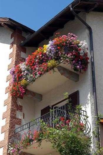 Casa come creare un giardino sul balcone pourfemme - Creare un giardino sul balcone ...