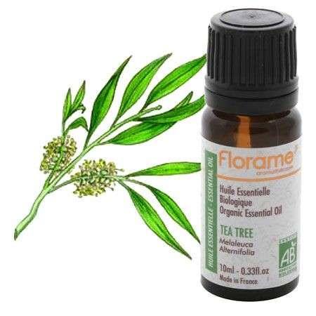 Oli essenziali: il tea tree oil