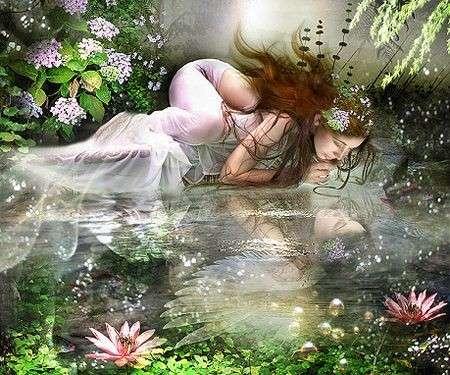 Significato dei fiori: la Ninfea