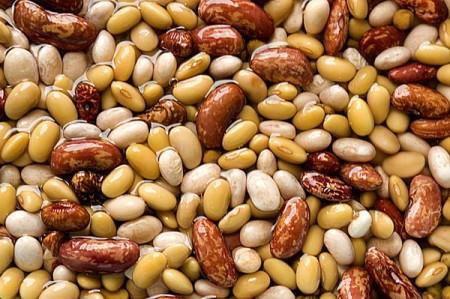 La dieta dimagrante anti-stress è a base di carne, fagioli e cereali