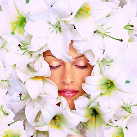 La cosmesi si fa 'green', prodotti di bellezza sempre più eco-compatibili e naturali