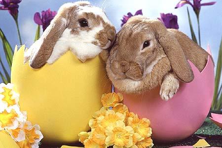 Dove trascorrere le vacanze di Pasqua in coppia