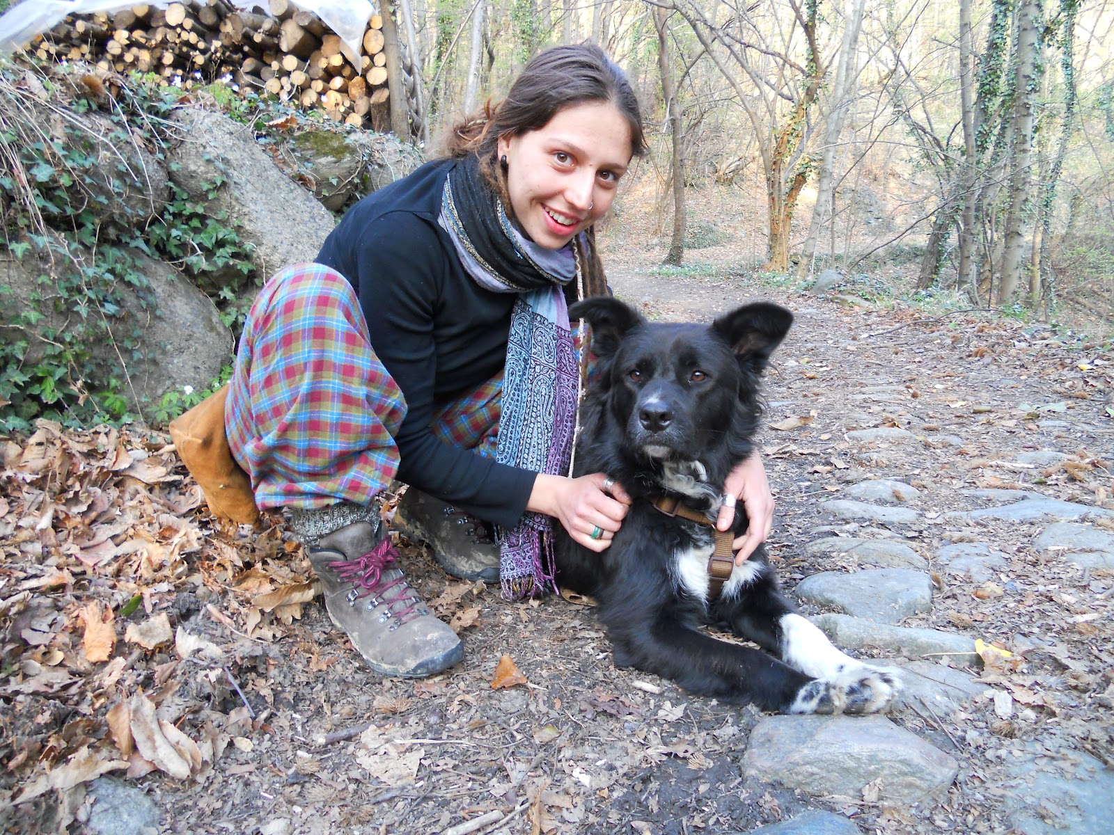 Cani come bodyguard: a Padova parte il corso rivolto alle donne