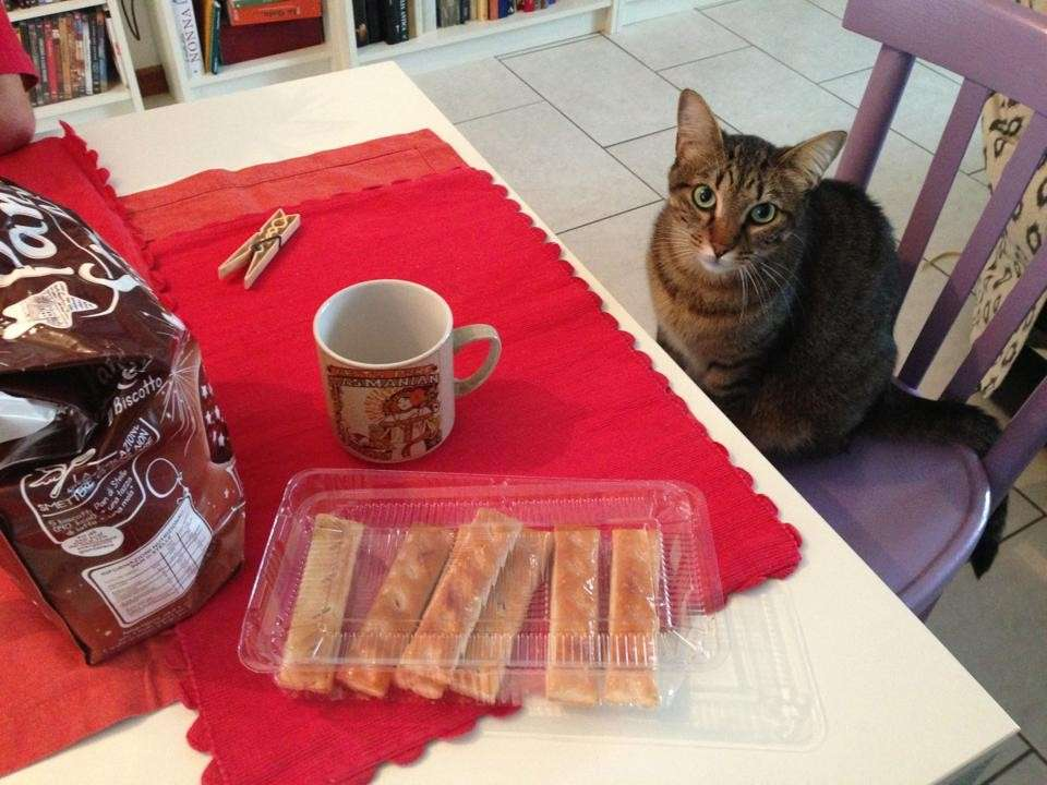 Colazioni bulgare: su Facebook la voce di chi (non) mangia brioche