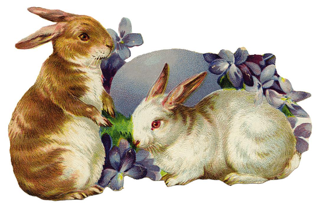 Storia del coniglio di Pasqua