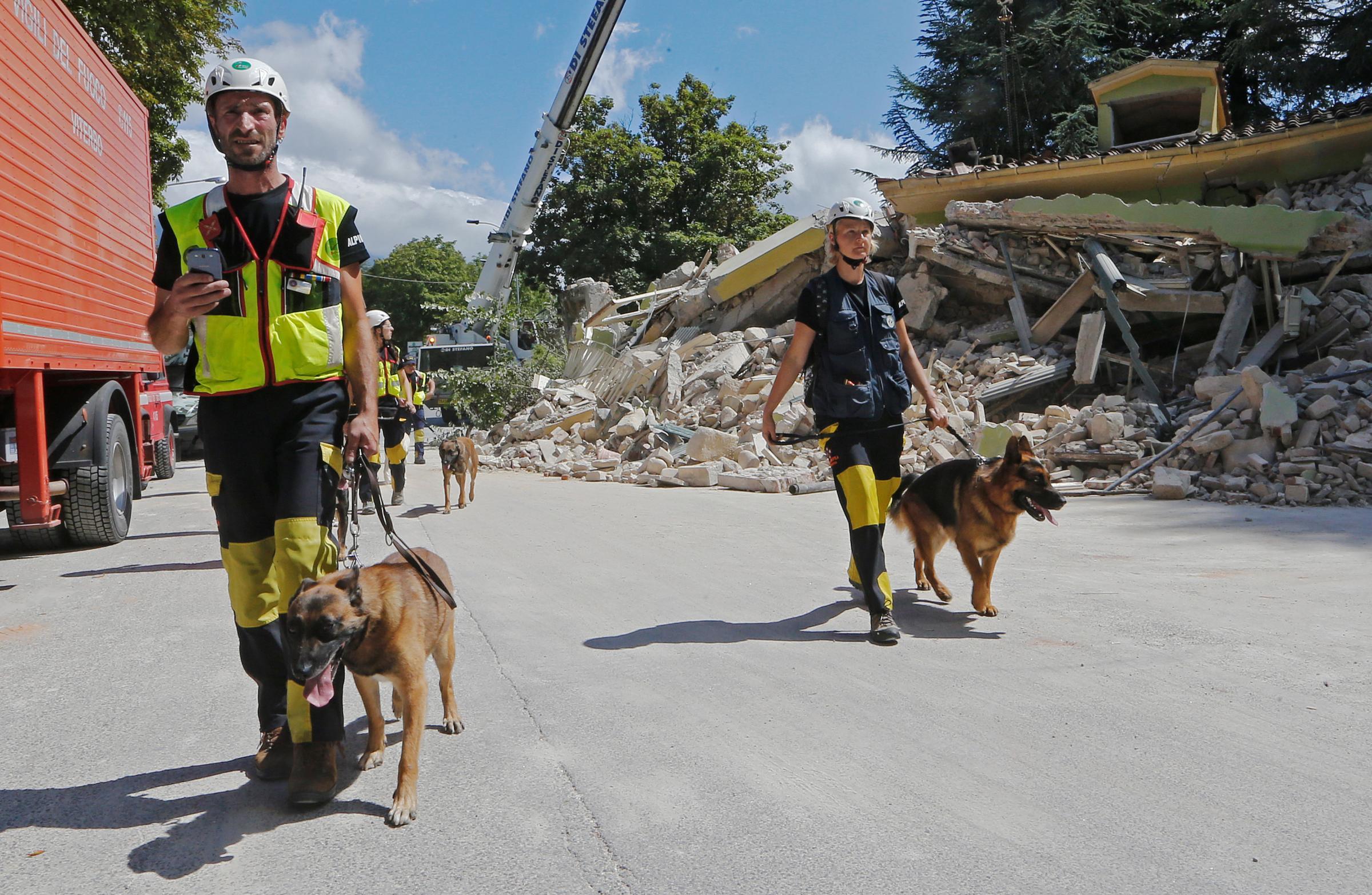 Terremoto in centro Italia, i soccorritori ancora all'opera