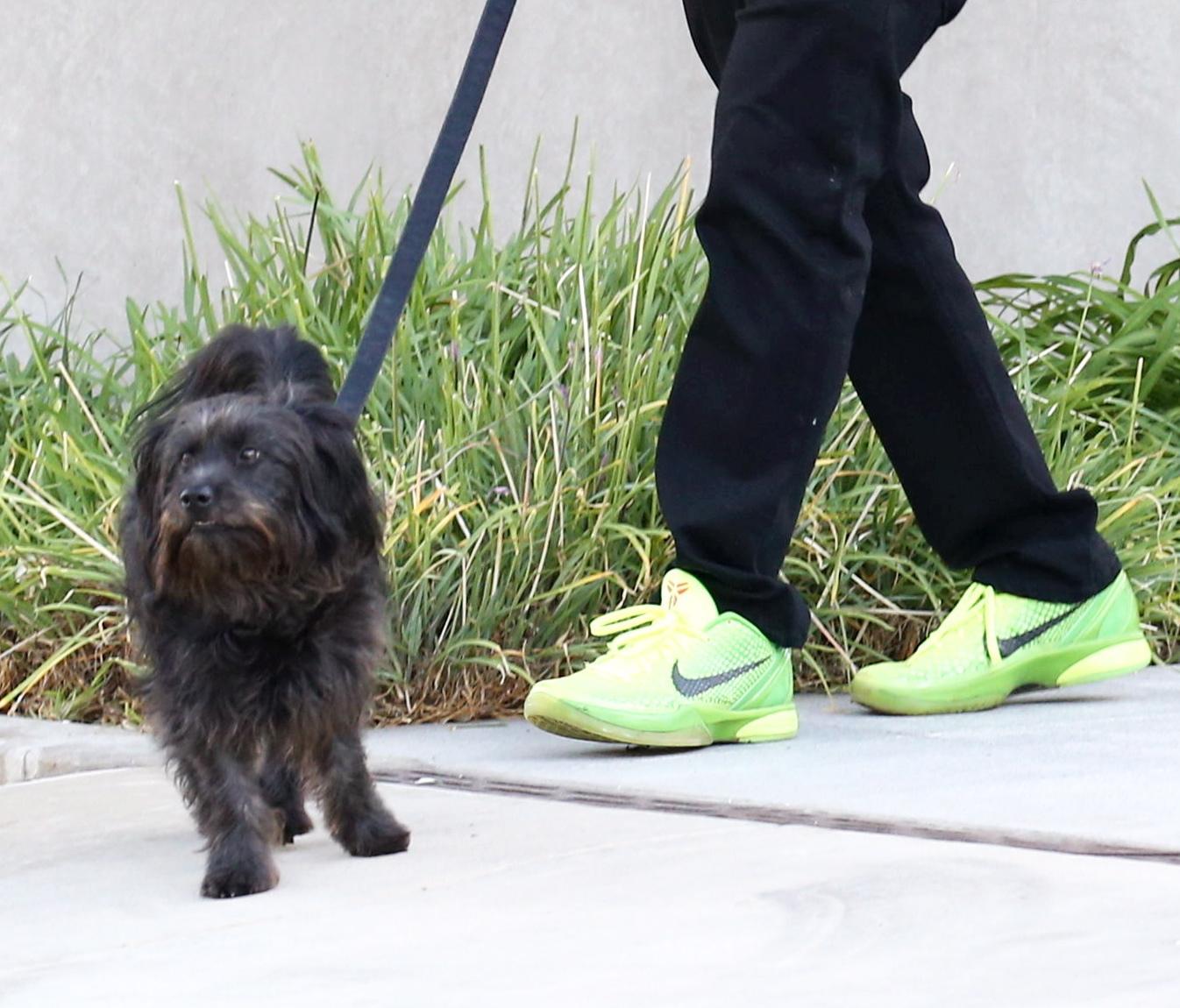 Dustin Hoffman a passeggio con il cane