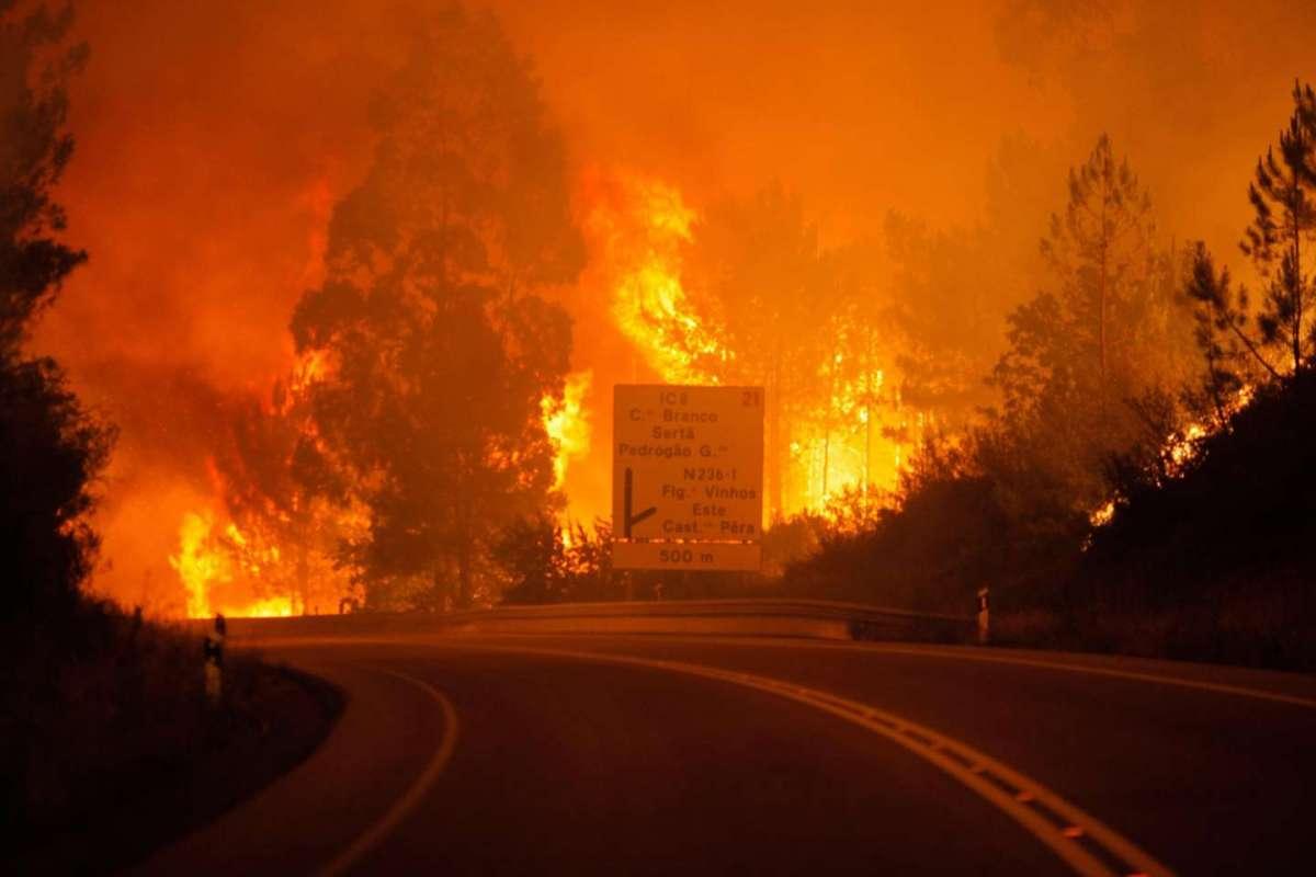 Portogallo, maxi incendio nel bosco fa strage: 62 vittime