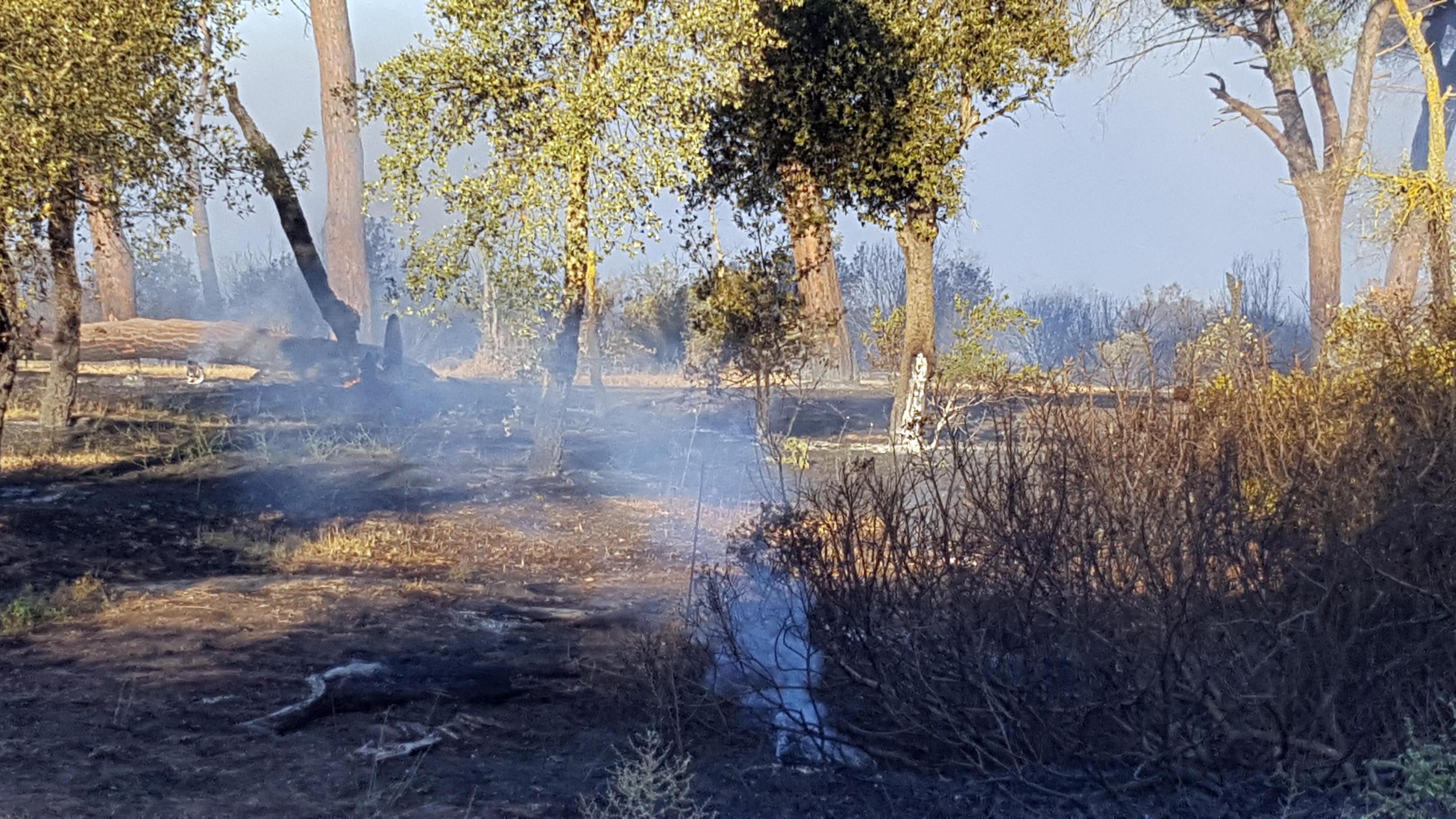 Incendi in Italia, la mappa dei luoghi che continuano a bruciare