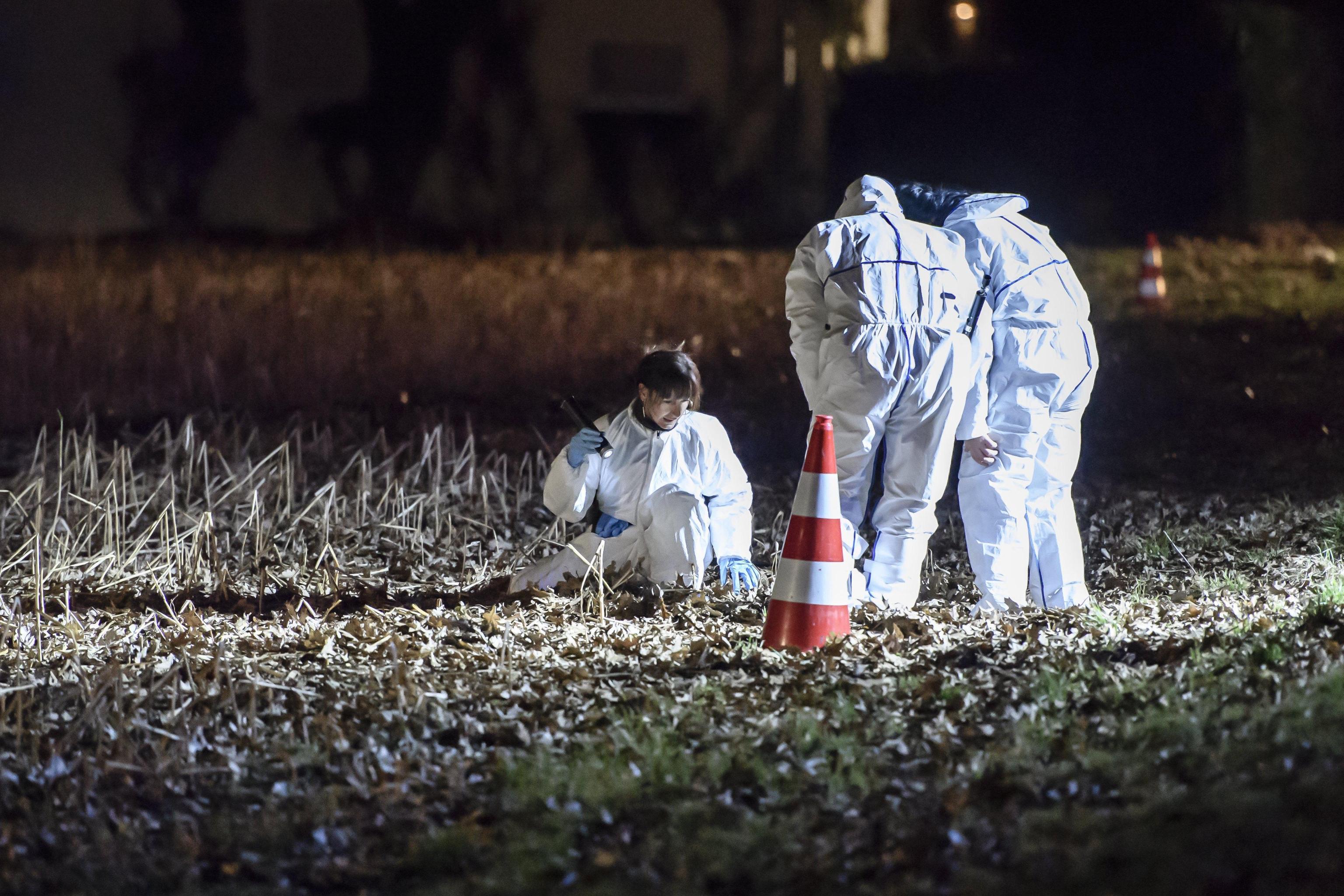 Usa, partorisce e uccide il bambino, poi gli dà fuoco: i resti trovati in giardino