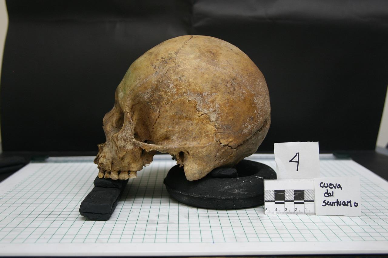 Perù, 140 bambini sacrificati agli dèi: agghiacciante scoperta durante uno scavo
