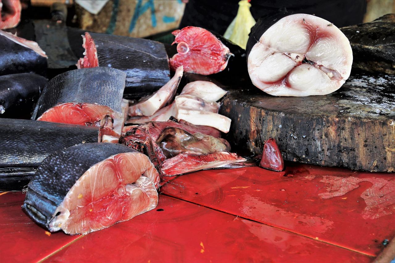 Palermo, mangiano tonno avariato: gravissime madre e figlia