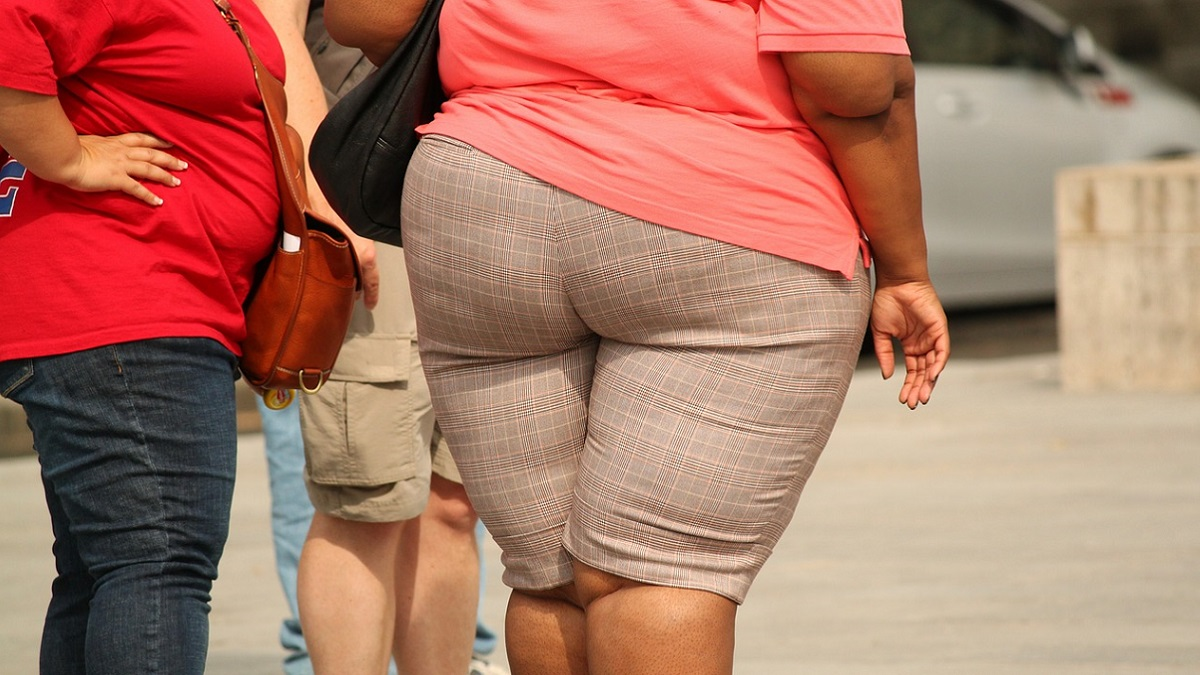 Terapia combinata contro l'obesità: buoni i risultati sui topi
