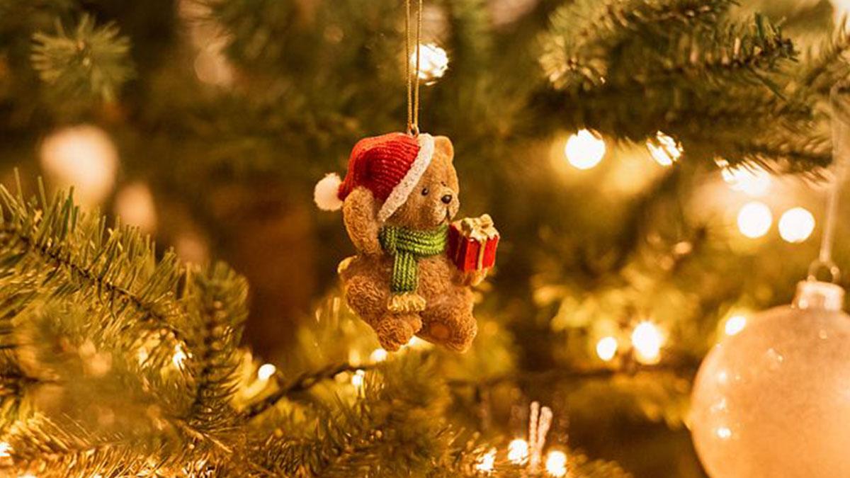 Chiede un rene per il fratello malato a Babbo Natale: la lettera commovente di una bimba