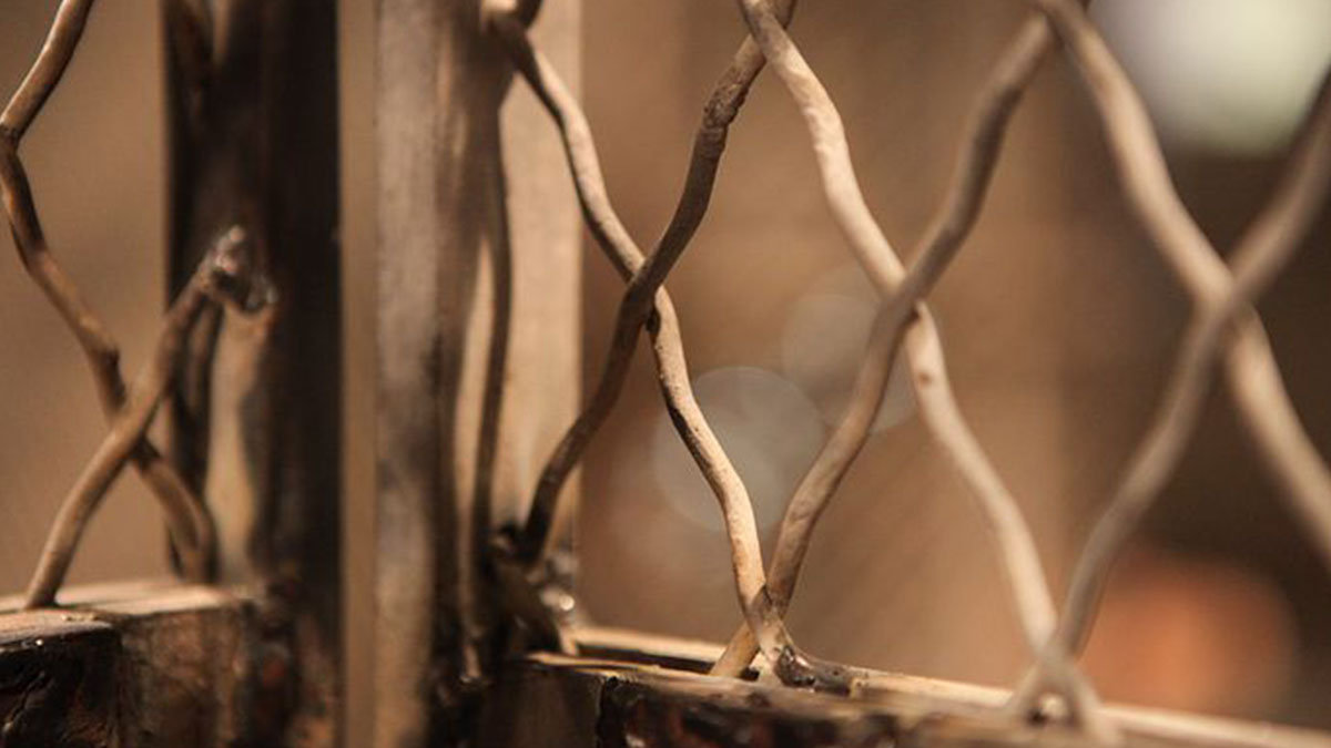Madre e figlia disabili prigioniere dei vicini: torturate per settimane senza pietà