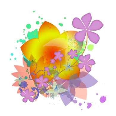 fiori curativi australiani