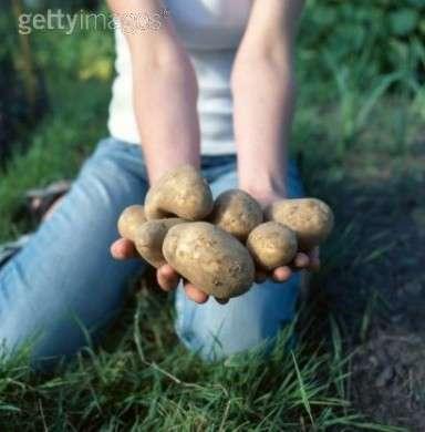 La dieta delle patate