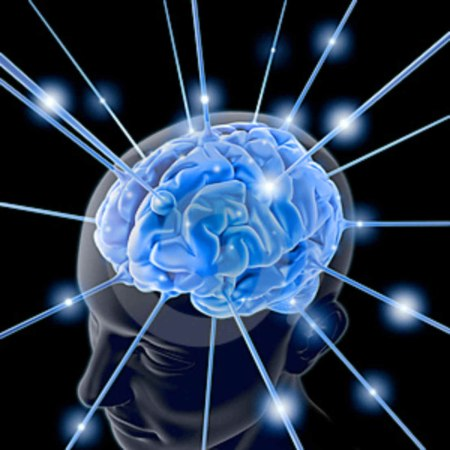 Brain Forum: dall'ansia all'alzheimer incontro tra ricercatori