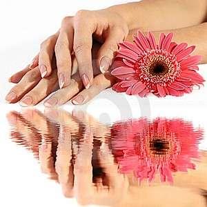 Quanto costa il french manicure dall'estetista