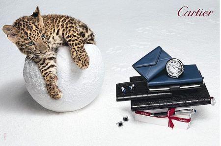 Cartier Natale 2010