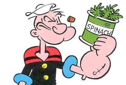 L'importanza degli spinaci nella dieta per stare in forma e mantenere la linea