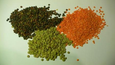 legumi lenticchie proteine
