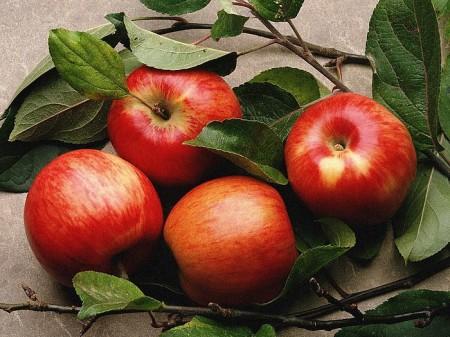 Prevenire le malattie autoimmuni si può, basta una mela al giorno (con la buccia)