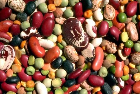 Dieta Ornish, perdere peso con l'aiuto dei legumi