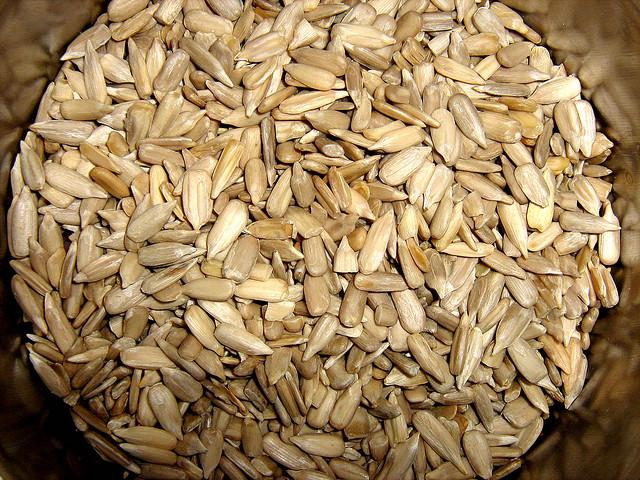 Ricette con i fiori, risotto affumicato con i semi di girasole