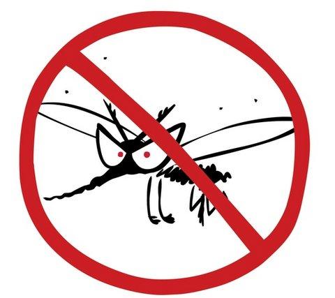 Allergia alle punture di zanzare: sintomi e rimedi