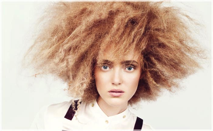 capelli secchi crespi_0_ante
