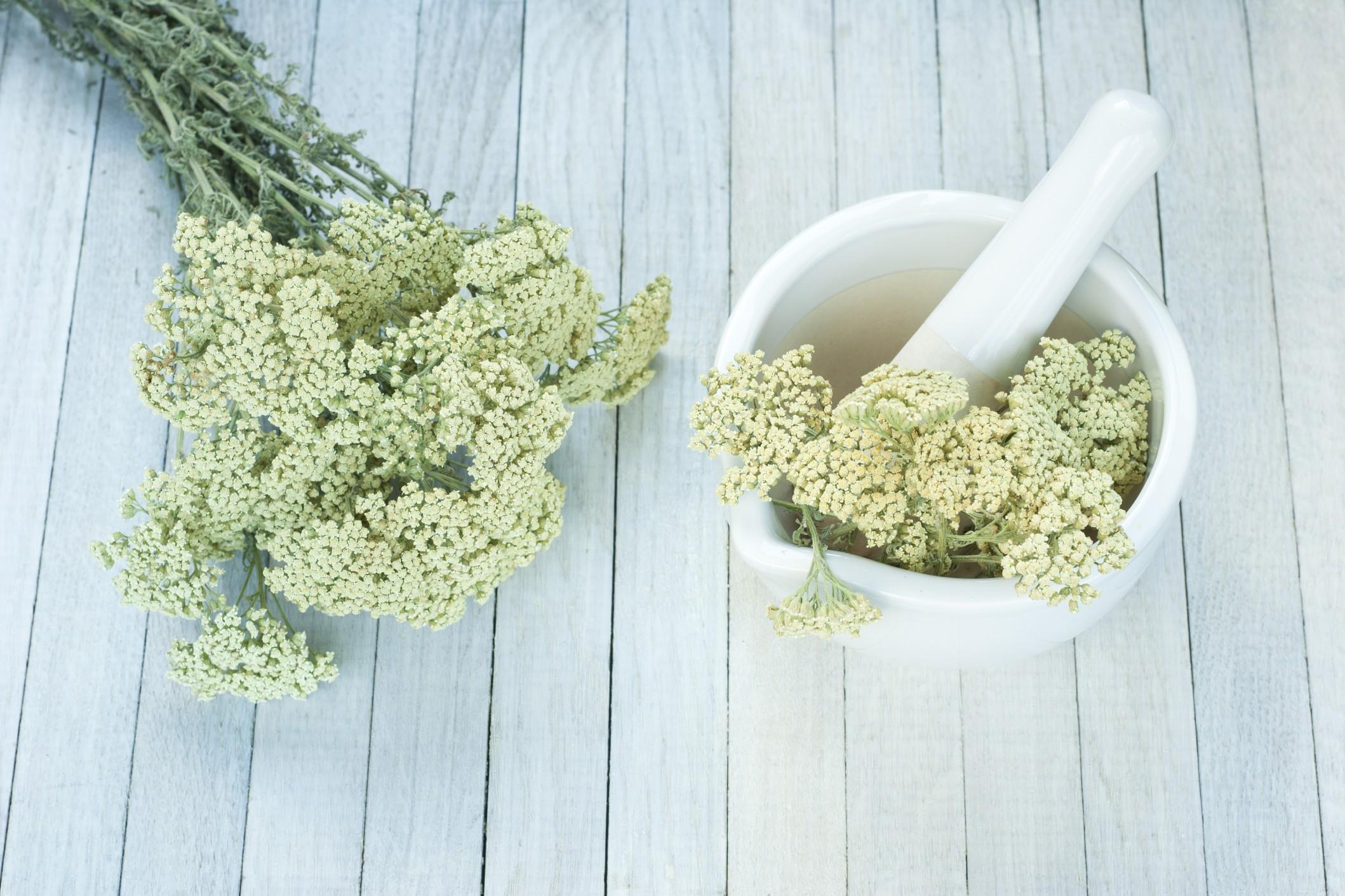 Minestrone con erba livia, ricetta light