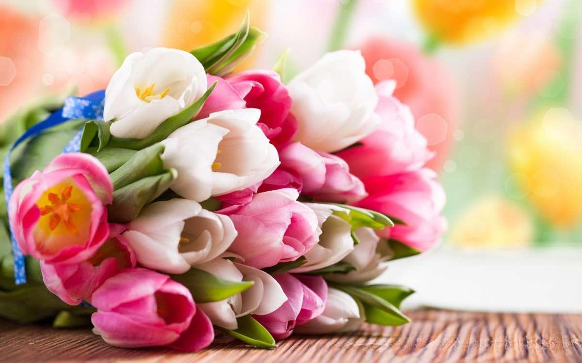 Romantici tulipani per la sposa
