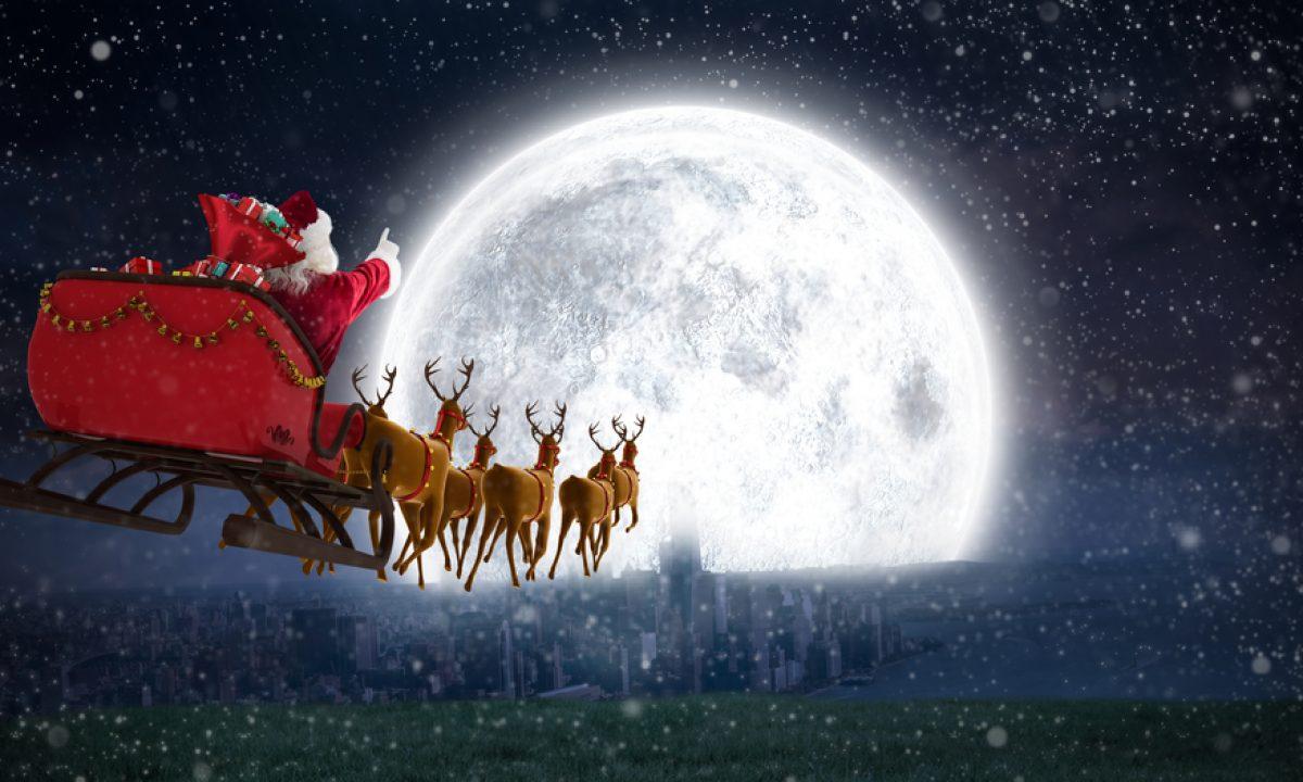 Renne Di Babbo Natale Nomi.Le Renne Di Babbo Natale Rudolph E Tutte Le Altre Pourfemme