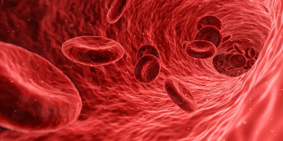 blood 1813410_960_720