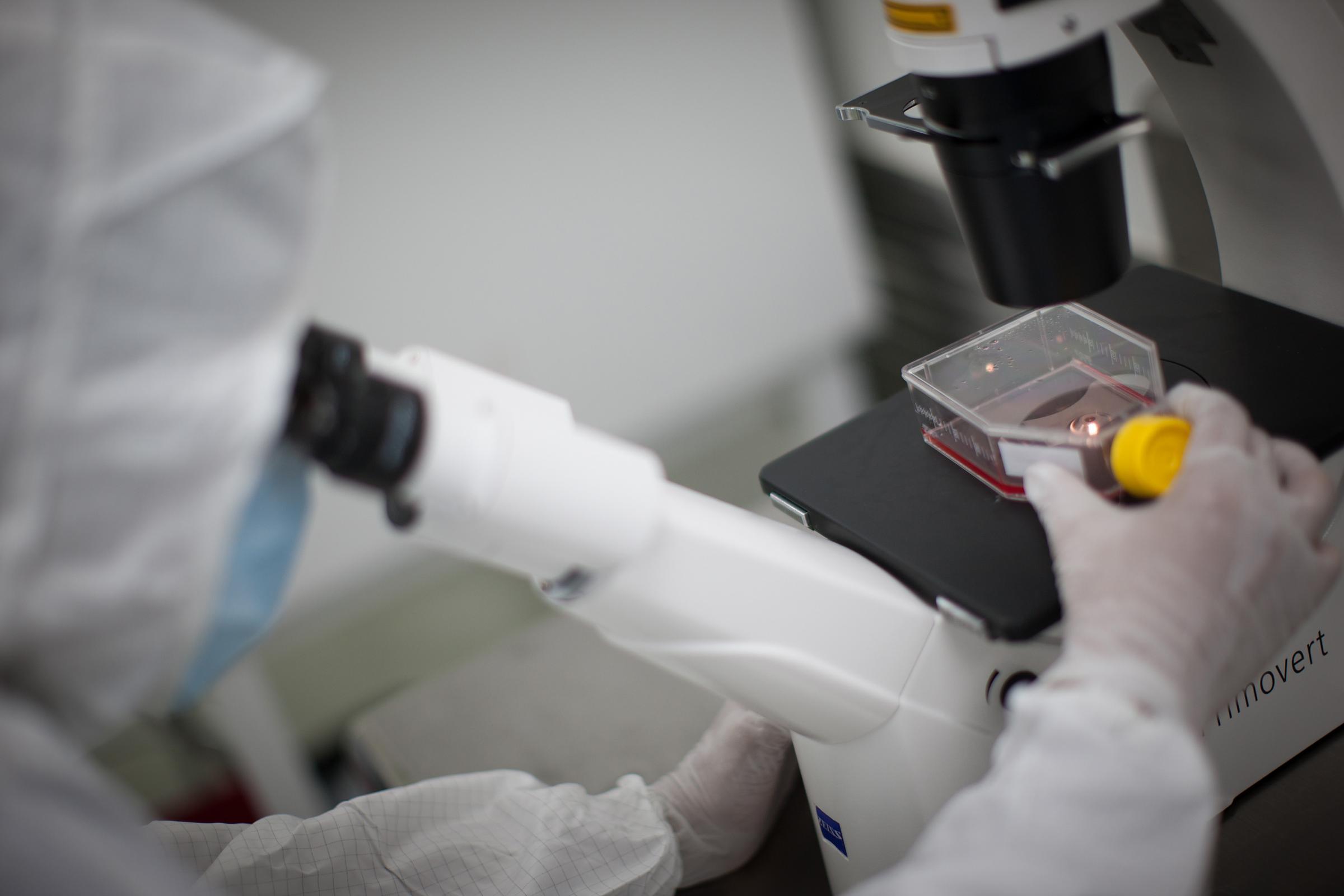 laboratorio ricerche studi sterilità