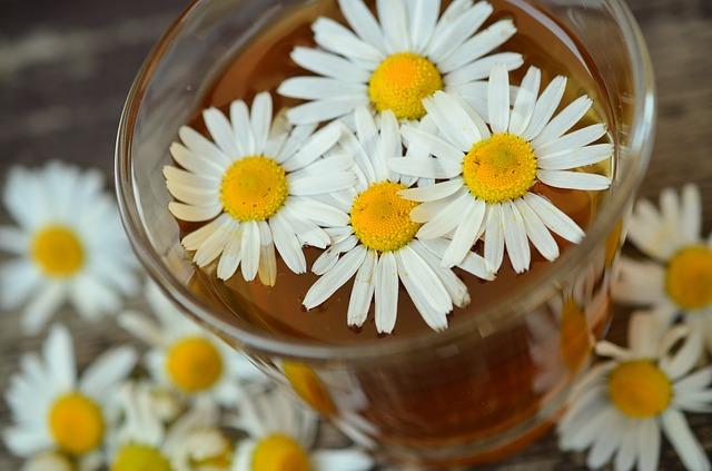 tisane fiori primavera