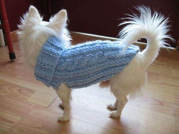 Cappottino per cani fai da te ai ferri e all'uncinetto: gli schemi [FOTO]