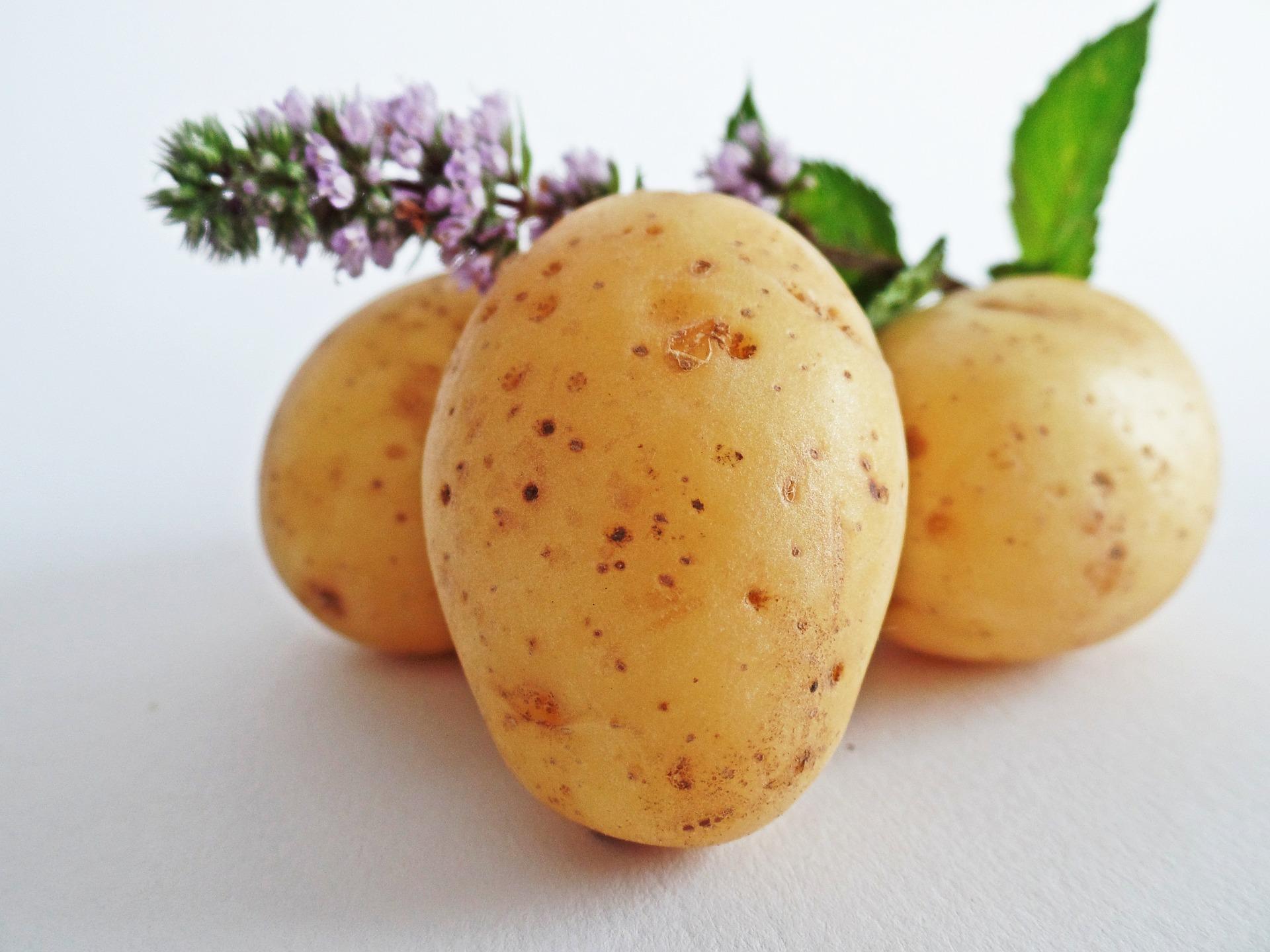 dieta patate lesse