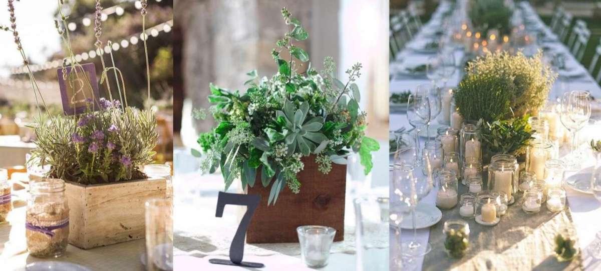 Centrotavola con piante aromatiche