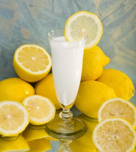 Sorbetto al limone con la gelatiera