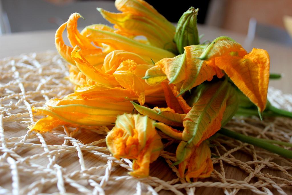 Le migliori 10 ricette con i fiori di zucca