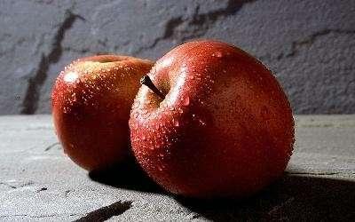 La dieta delle mele