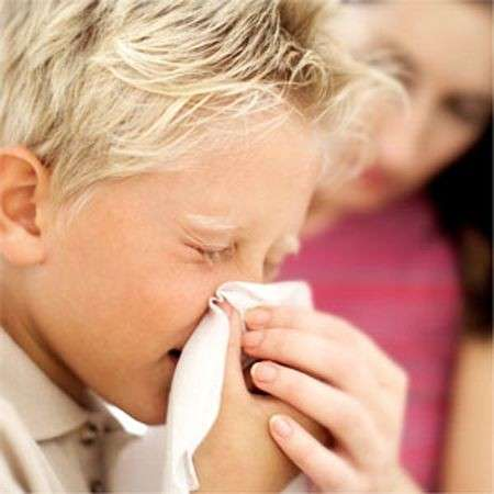 Allergia agli acari: come difendersi
