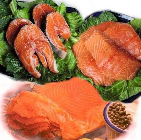 La dieta del salmone per una pelle perfetta