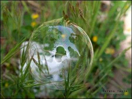 bolla di sapone serena vasta