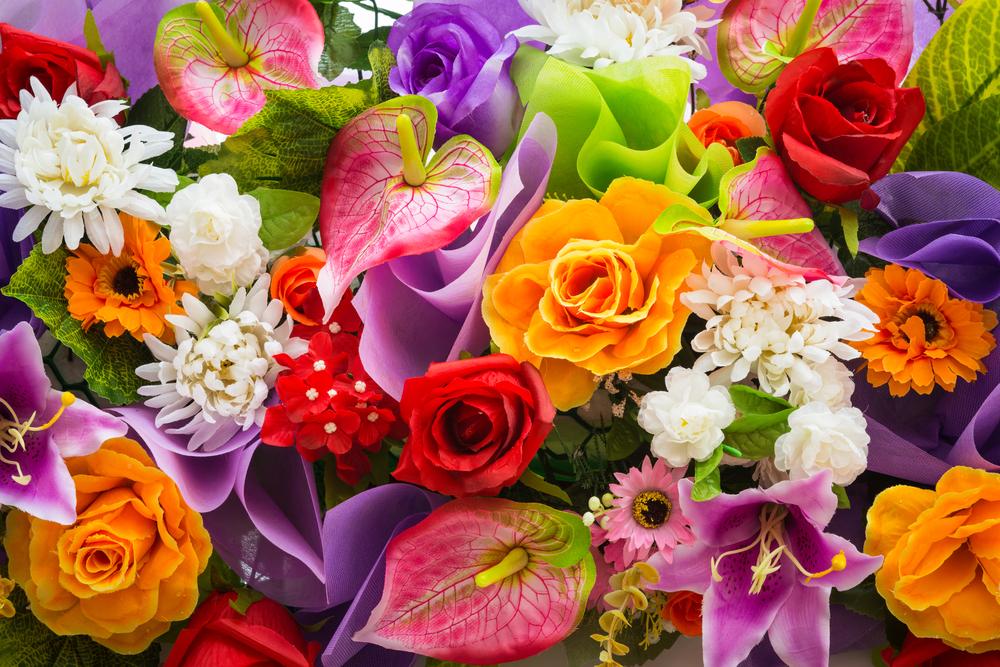 I fiori sono anti stress naturali