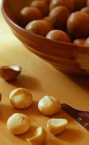 Noci Macadamia, il segreto della longevità