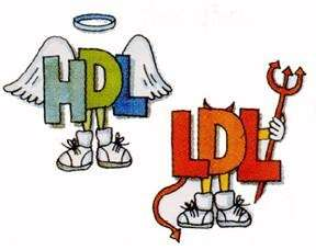 HDL e LDL