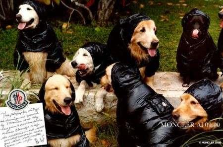 Moncler collezione autunno inverno 2009/10